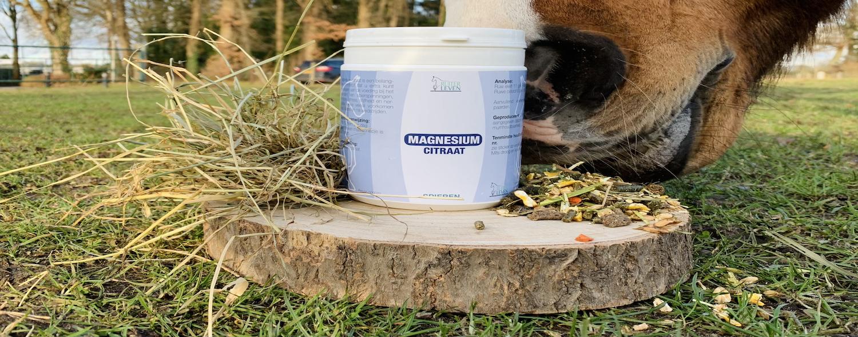 magnesiumtekort paard symptomen voorkomen magnesium citraat supplement